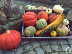 Bon Goesta groenten en fruit van boer